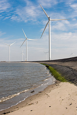 Wind farm on the waterfront - p1079m1137134 by Ulrich Mertens