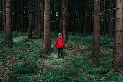 Woman in red jacket in the forest - p1184m1440535 by brabanski