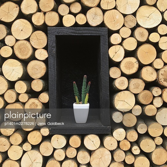 Flowerpot placed in stacked firewood  - p1401m2278226 by Jens Goldbeck