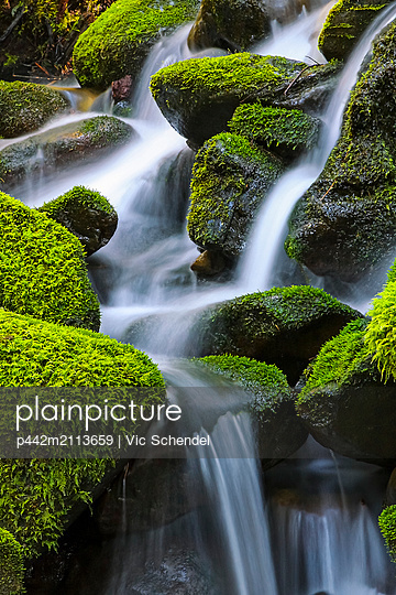Moss-covered rocks with cascading water; Denver, Colorado, United States of America - p442m2113659 by Vic Schendel