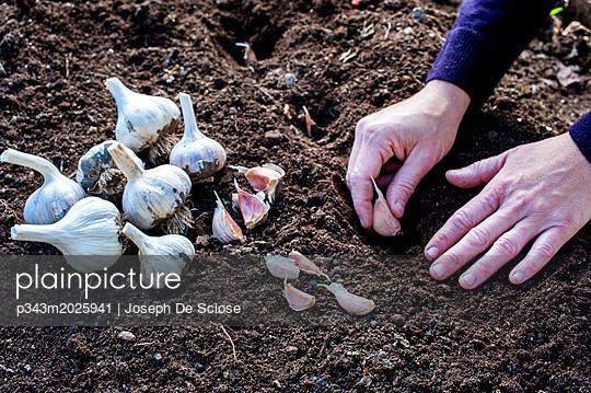 p343m2025941 von Joseph De Sciose
