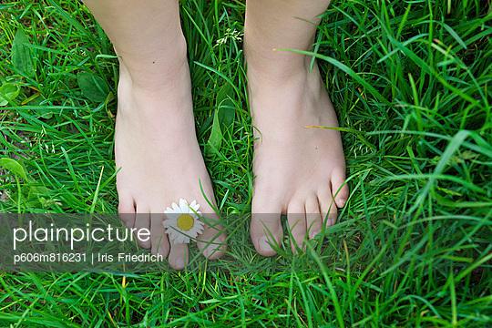 p606m816231 von Iris Friedrich