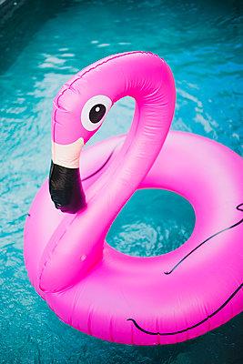 Floating flamingo in swimming pool - p1290m1168823 by Fabien Courtitarat