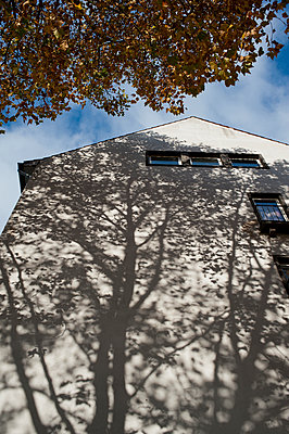 Shadow on the wall - p267m894085 by Ingo Kukatz