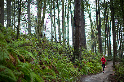 A woman running a trail in the woods. - p343m1168487 by Woods Wheatcroft