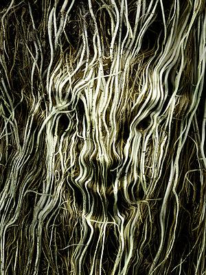 Nightmare - p56711085 by daniel belet
