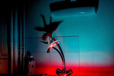 Crane  - p864m2185635 by Michiru Nakayama