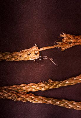 Rope - p971m808430 by Reilika Landen