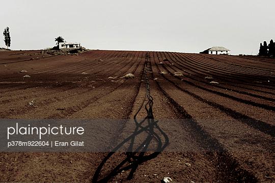 p378m922604 von Eran Gilat