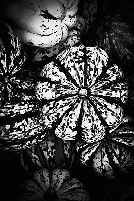 Pumpkins - p1149m1492418 by Yvonne Röder