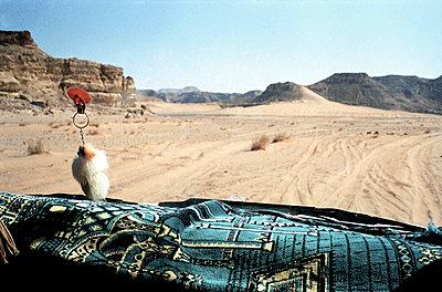 prayer mat (southern sinai, egypt)   - p5673213 by Scarlett Coten
