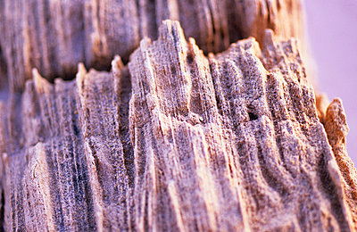 Sandstone - p8850229 by Oliver Brenneisen