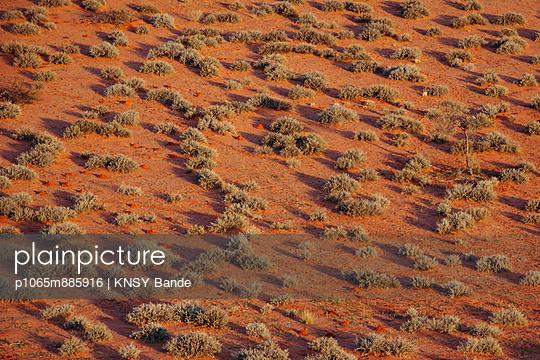 Kalahari - p1065m885916 von KNSY Bande