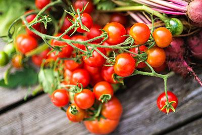 Fresh tomatoes - p1418m1571968 by Jan Håkan Dahlström