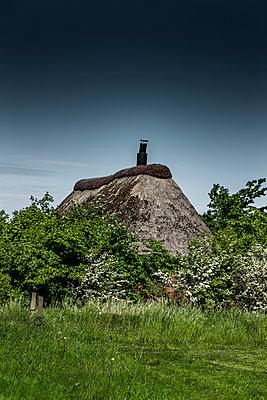Verstecktes Reetdachhaus - p248m1462674 von BY
