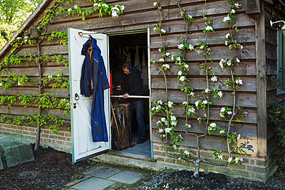 A garden shed workshop with plants trained up the outside, flowering. View through the open door of a man at work.  - p1100m1450981 by Mint Images