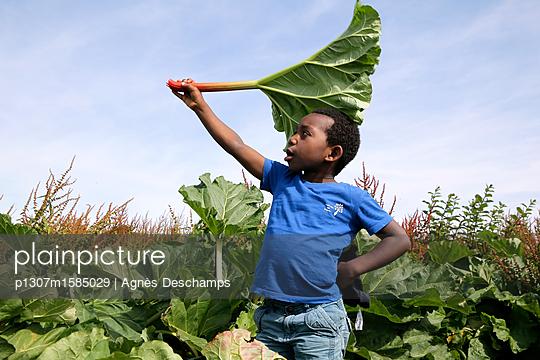 Junge spielt mit einem riesigen Blatt - p1307m1585029 von Agnès Deschamps