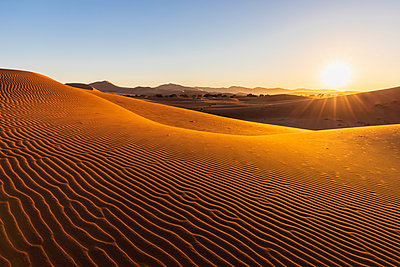Africa, Namibia, Namib desert, Naukluft National Park, sand dunes in the morning light against the morning sun - p300m2023857 by Fotofeeling