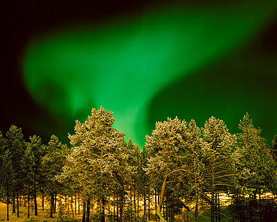Nordlichter in Lappland - p972m1160319 von Felix Odell