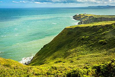 Grüne Insel - p815m1503488 von Erdmenger