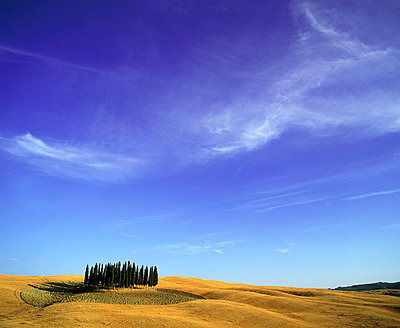 Orcia valley in summer - p4298147 by Fabio Muzzi