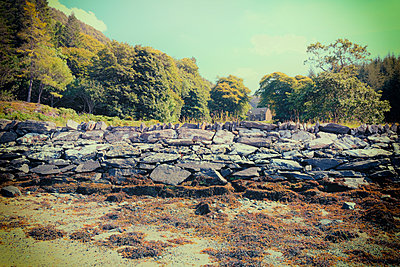 Beach rocks cottage coast seaweed picturesque - p609m1219831 by OSKARQ