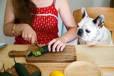 French bulldog watching woman cutting cucumber on table - p300m1140878 by Retales Botijero