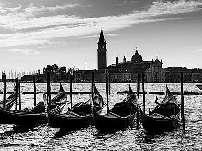 Gondolas moored in a row in the water with Piazza San Marco in the distance; Venice, Italy - p442m1179977 by Keith Levit