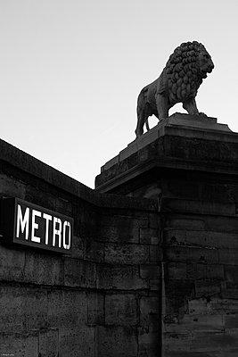 Lion - p873m960595 by Philip Provily