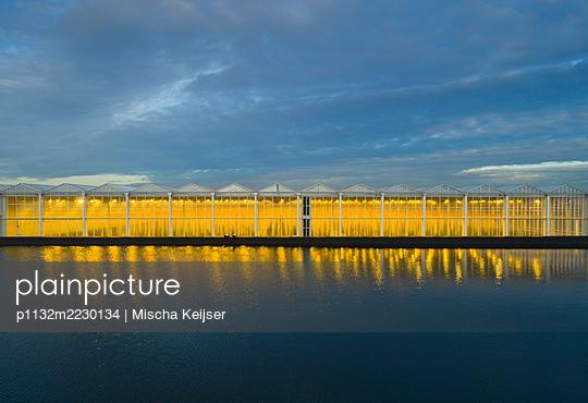 Netherlands, Illuminated greenhouse - p1132m2230134 by Mischa Keijser