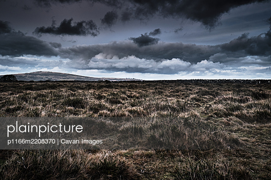 Moorland, Wild Grassland, Cloudy Day - p1166m2208370 by Cavan Images