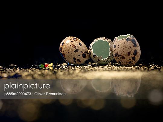 Quail eggs, broken shell - p885m2200473 by Oliver Brenneisen