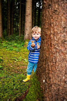Pilze sammeln im Wald - p1386m1452193 von beesch