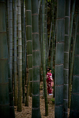 Japanese woman between bamboo - p7840012 by Henriette Hermann