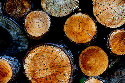 Logs - p6370125 by Florian Stern