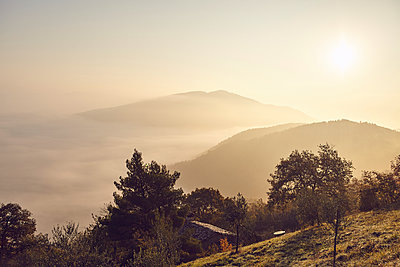 Morning sun in Umbria - p1305m1138636 by Hammerbacher