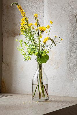 Gelbe Wildblumen in Glasvase neben dem Fenster - p948m2134108 von Sibylle Pietrek