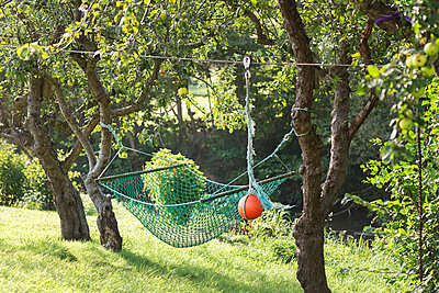 Hammock in backyard - p312m1164733 by Rebecca Wallin