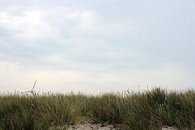 Windrad hinterm Deich - p4860083 von anneKathringreiner