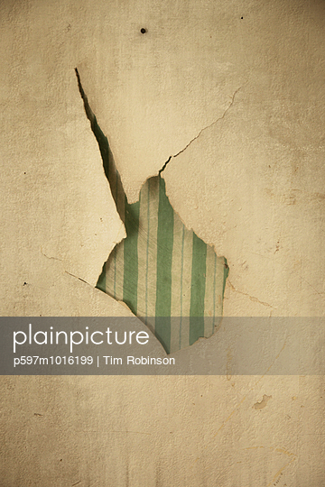 Torn wallpaper - p597m1016199 by Tim Robinson