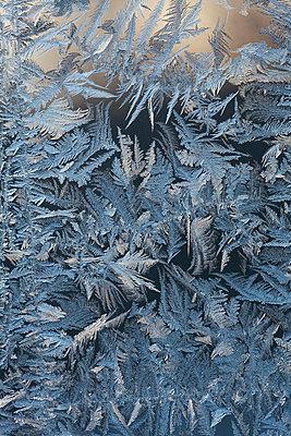 Eisblumen am Fenster - p235m904266 von KuS