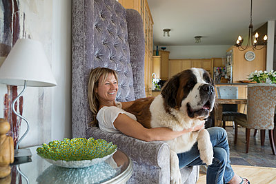 Saint Bernard dog sitting on woman's lap armchair - p1192m1078263f by Hero Images