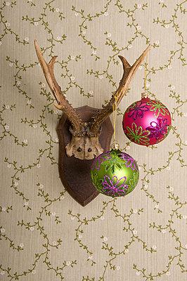 Deer's antlers and christmas - p4510908 by Anja Weber-Decker