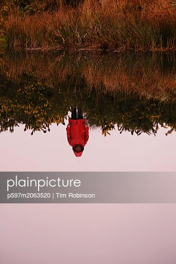 p597m2063520 von Tim Robinson