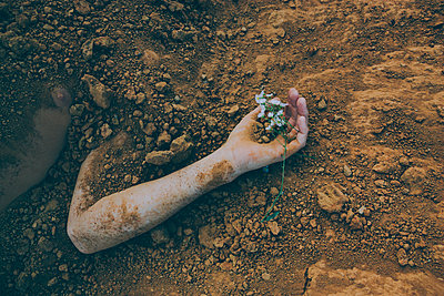 Flowers in Buried Hand - p1262m1072838 by Maryanne Gobble