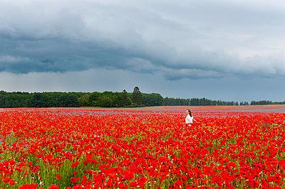 Woman walking on red poppy field against cloudy sky - p300m2197484 by Daniel Ingold