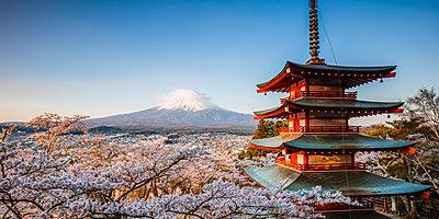 Iconic Chureito pagoda during cherry blossom season with mt. Fuji, Fuji Five lakes, Japan - p651m2062168 by Matteo Colombo photography