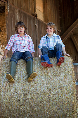 Two boys on haybale - p42911077f by Judith Haeusler