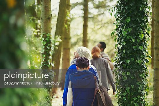 p1023m1183167 von Paul Bradbury