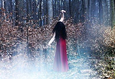 Frau in rotem Kleid im Wald - p1229m2258928 von noa-mar